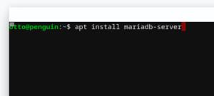 apt install mariadb-server