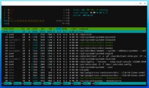 Chromebook Linux mode running htop